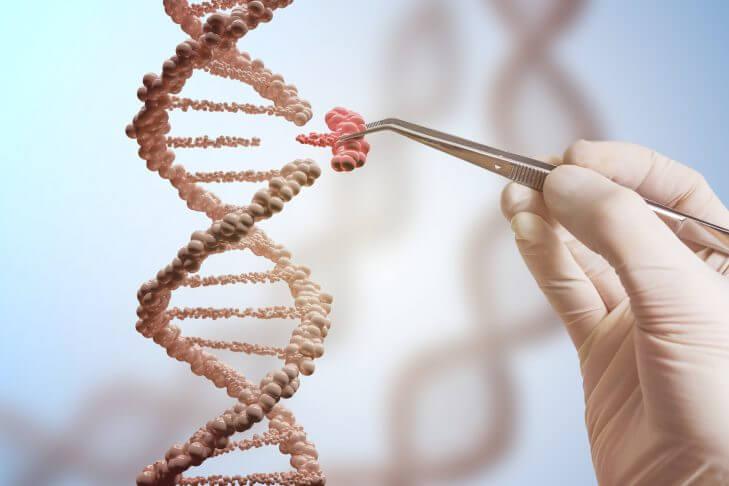 The dangers of genetic engineering
